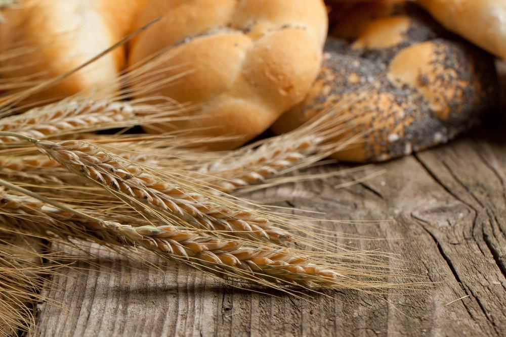 Dried Ears Of Corn