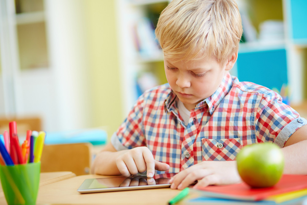 Serious Elementary Learner Using Touchpad