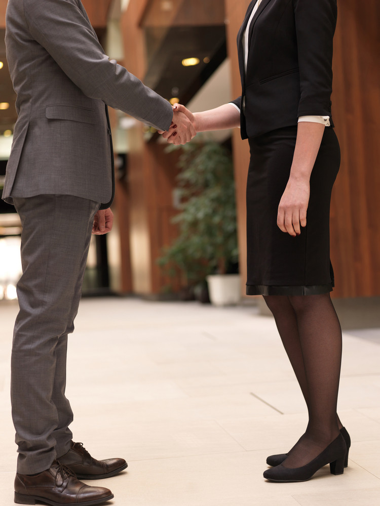 Businesswoman And Business Man Handshake
