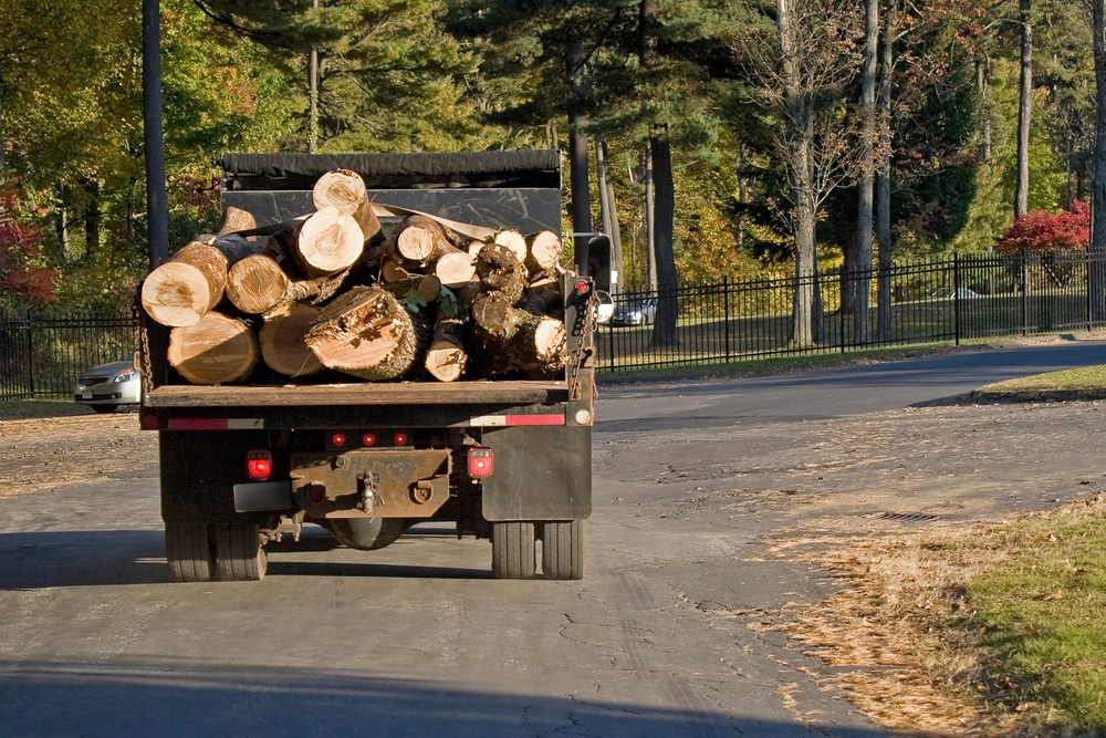A dump truck carrying a large load of wood logs.