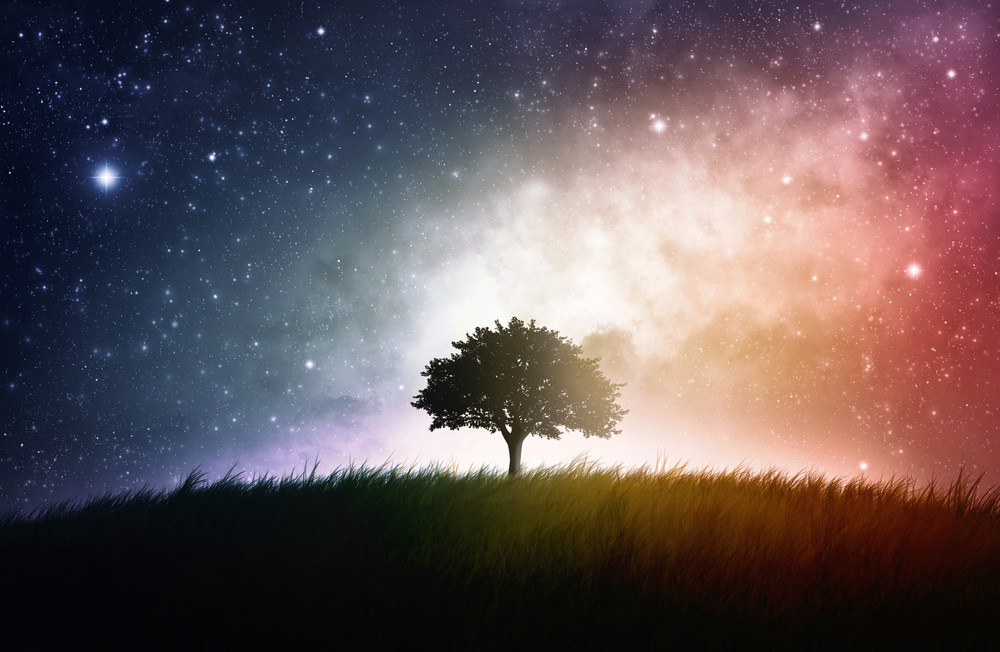 A single tree in a field with beautiful space background