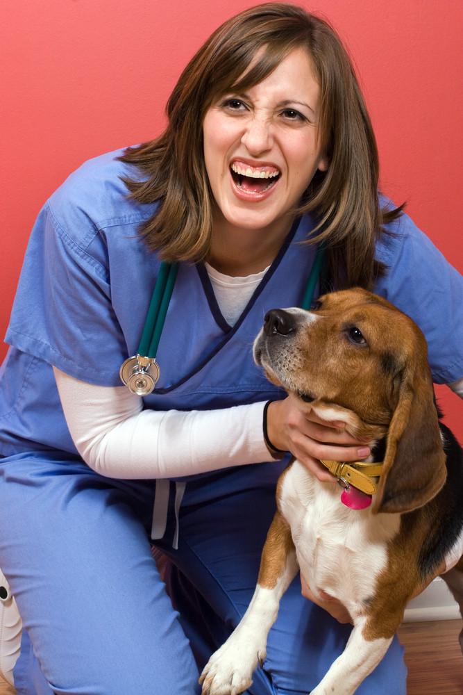 A veterinarian posing with a purebred beagle dog.
