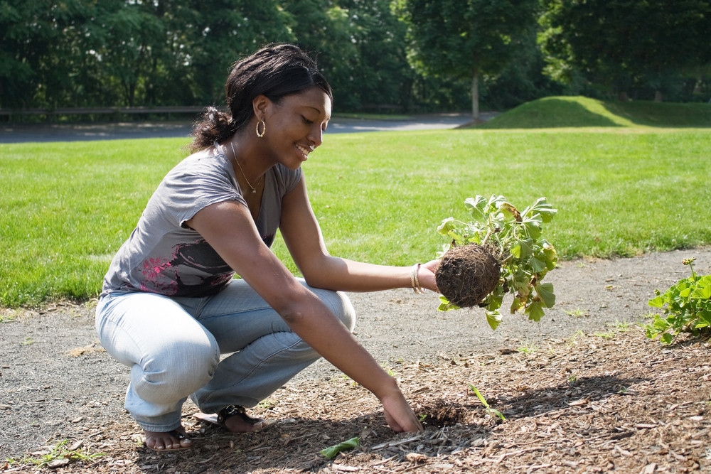A young woman planting in her garden.