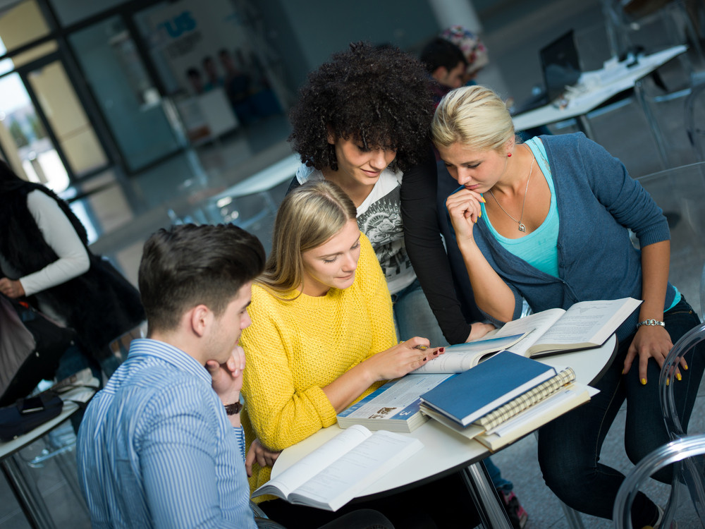 Group of students study