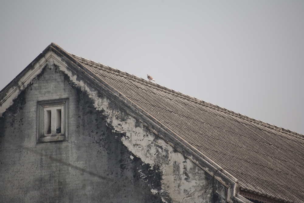 Abandoned vintage house roof. Architectural detail.