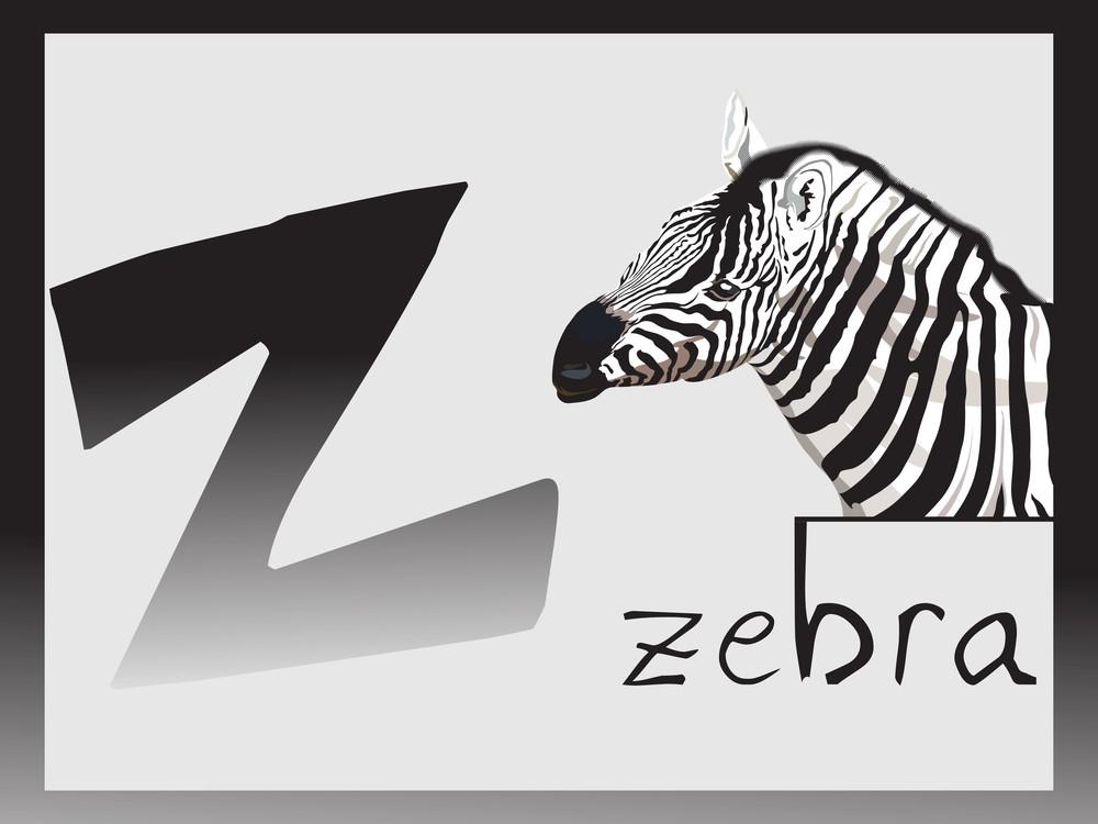 Abstract Alphabet Series Z