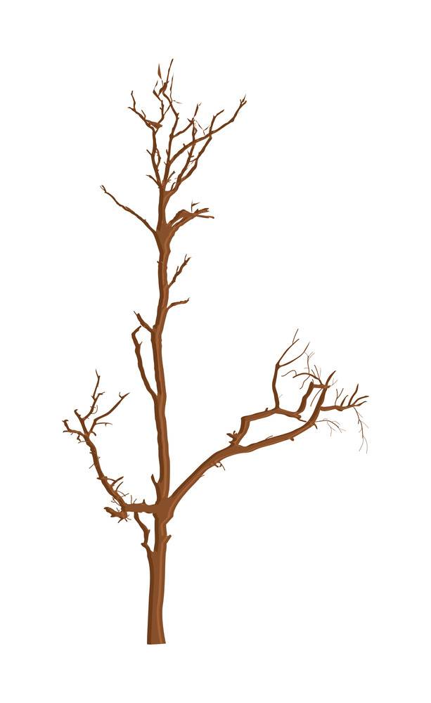 Abstract Dead Tree Background