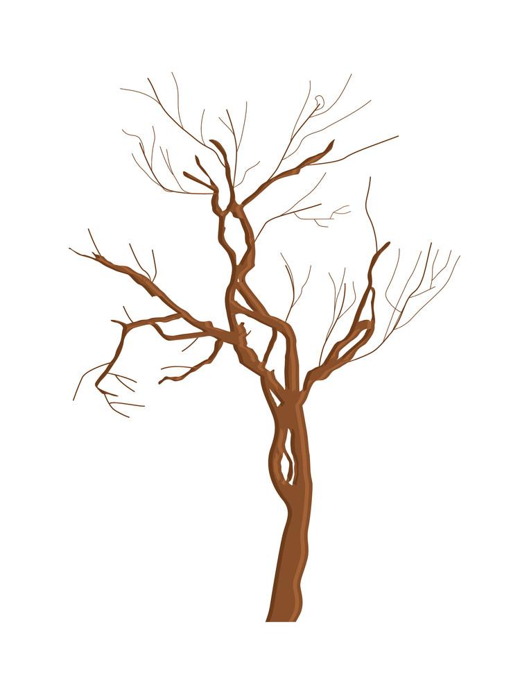 Abstract Dead Tree Shape