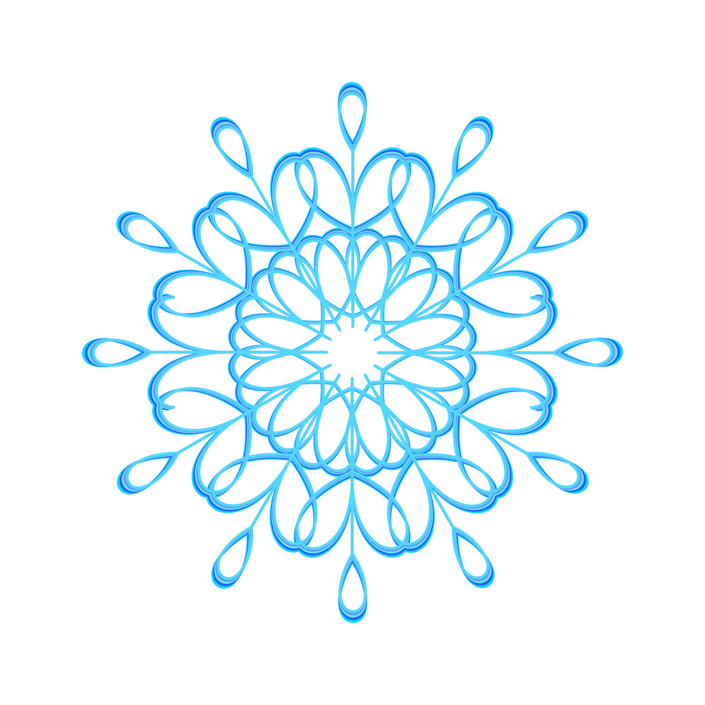 Abstract Floral Snowflake