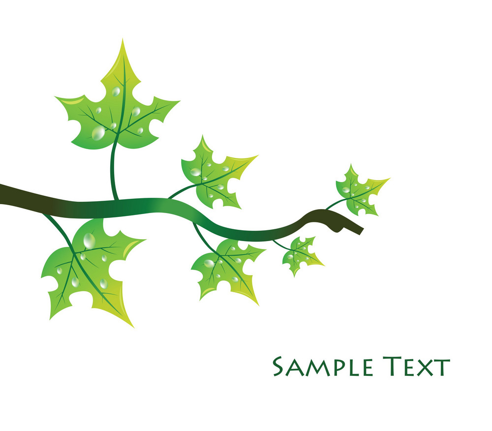 Abstract Illustration With Floral And Lots Of Leaves