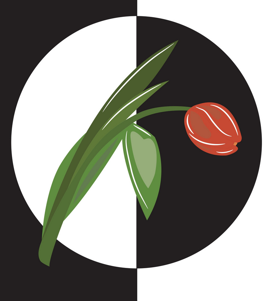 Abstract Spring Illustration With A Beautiful Tulip