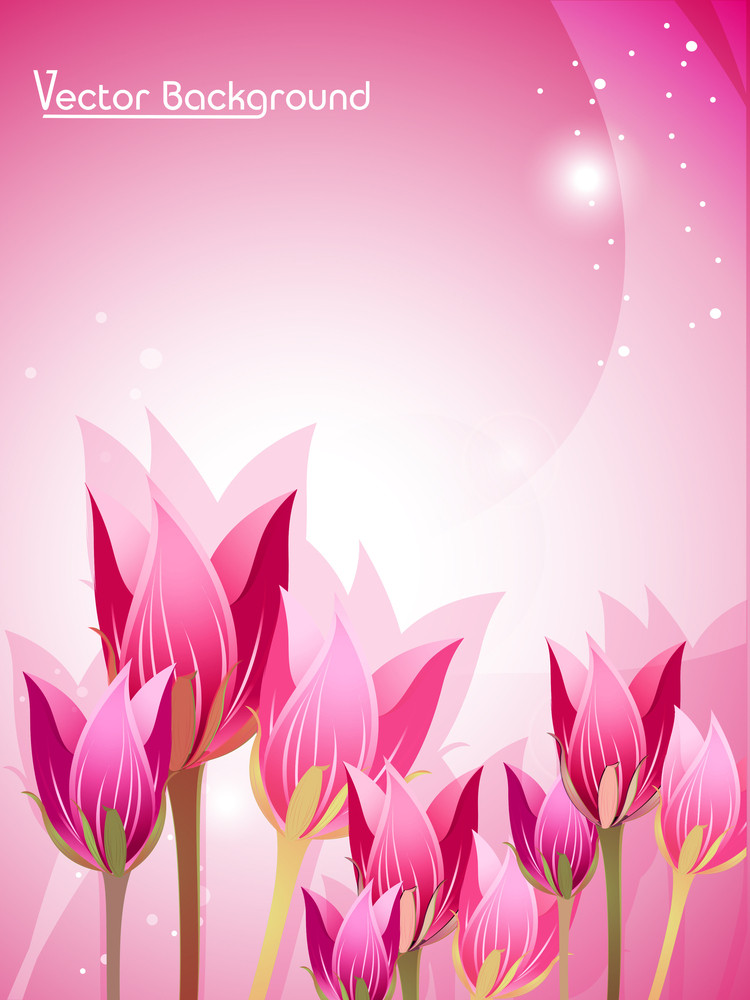 Abstract Tulip  Flowers Background