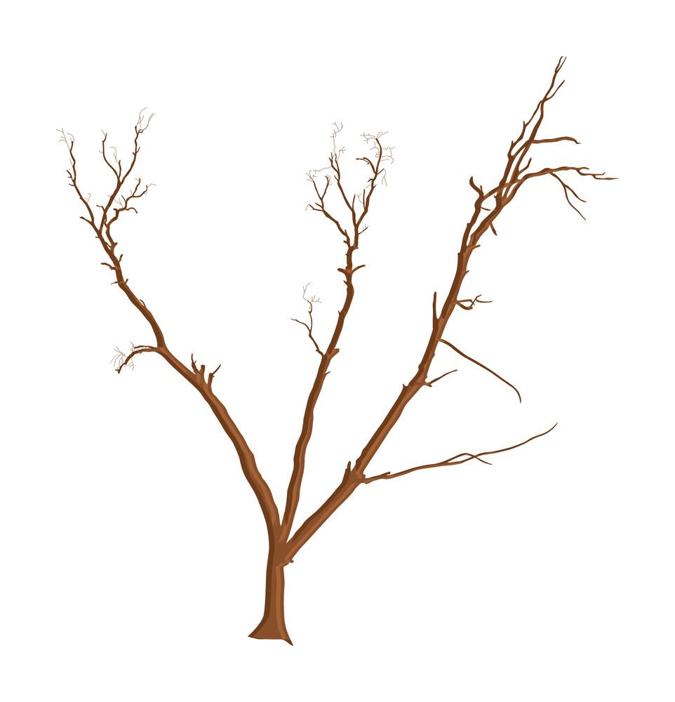 Abstract Vector Dead Tree