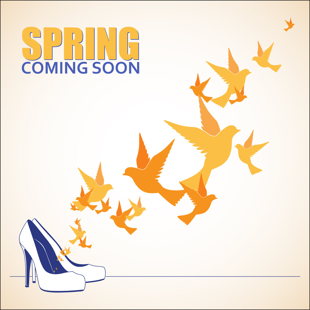 Abstract Vector Illustration Of Shoes And Birds.