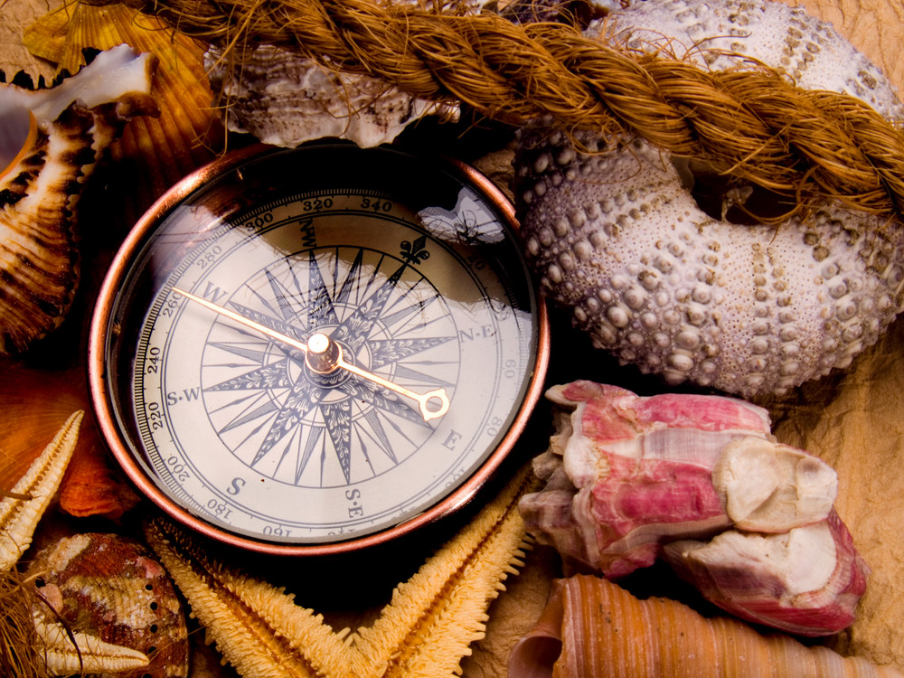 Adventure Decoration With Compass And Shells On Antique Parchment. Isolated On White