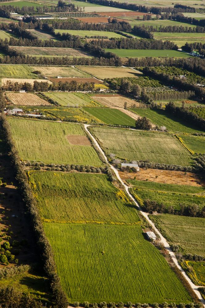 Aerial View At Farm Fields