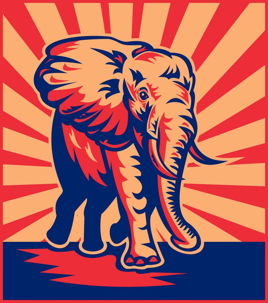 African Bull Elephant Charging
