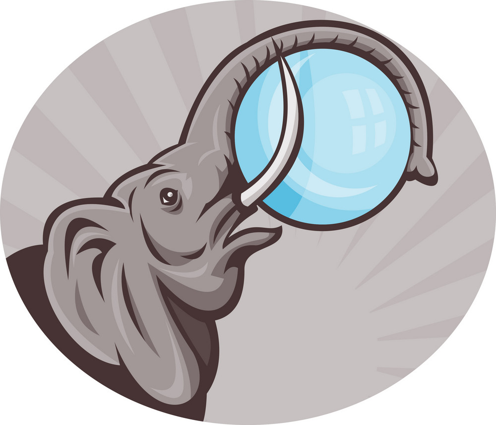 African Elephant With Sphere Ball