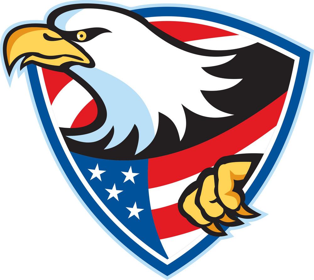 American Bald Eagle Flag Shield