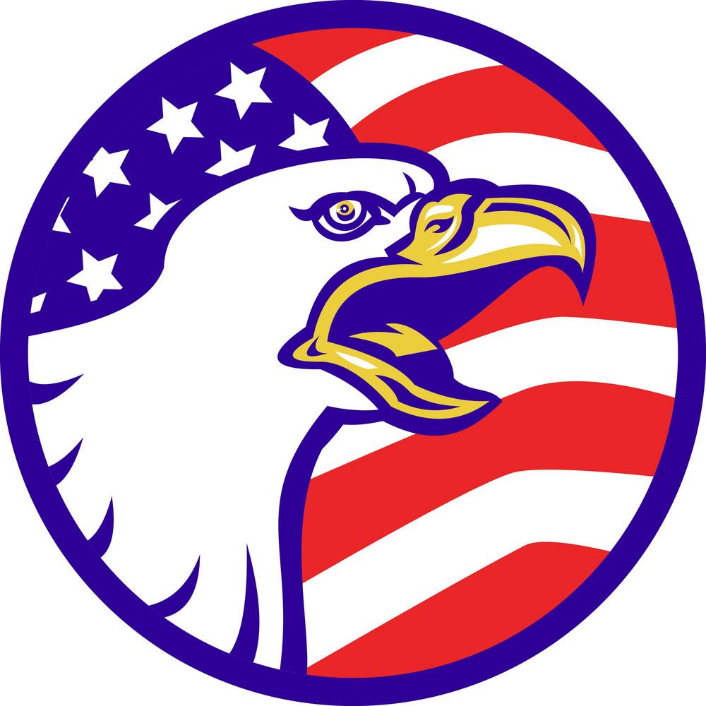 American Bald Eagle Screaming With Usa Flag