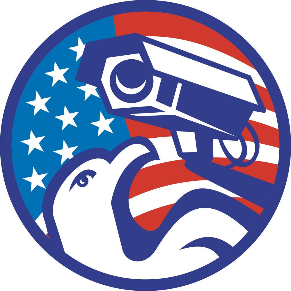 American Bald Eagle Security Camera