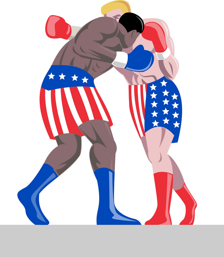 American Boxer In Stars And Stripes