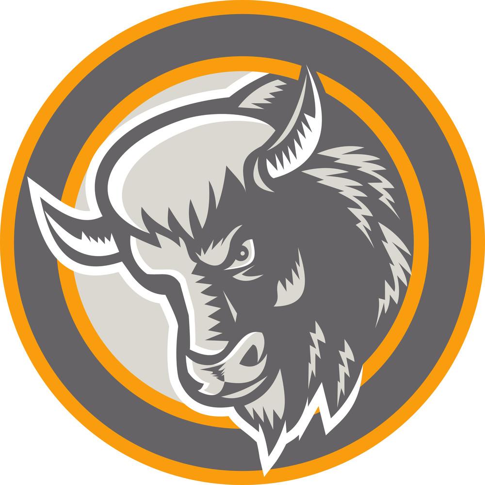 American Buffalo Bison Head Circle Retro