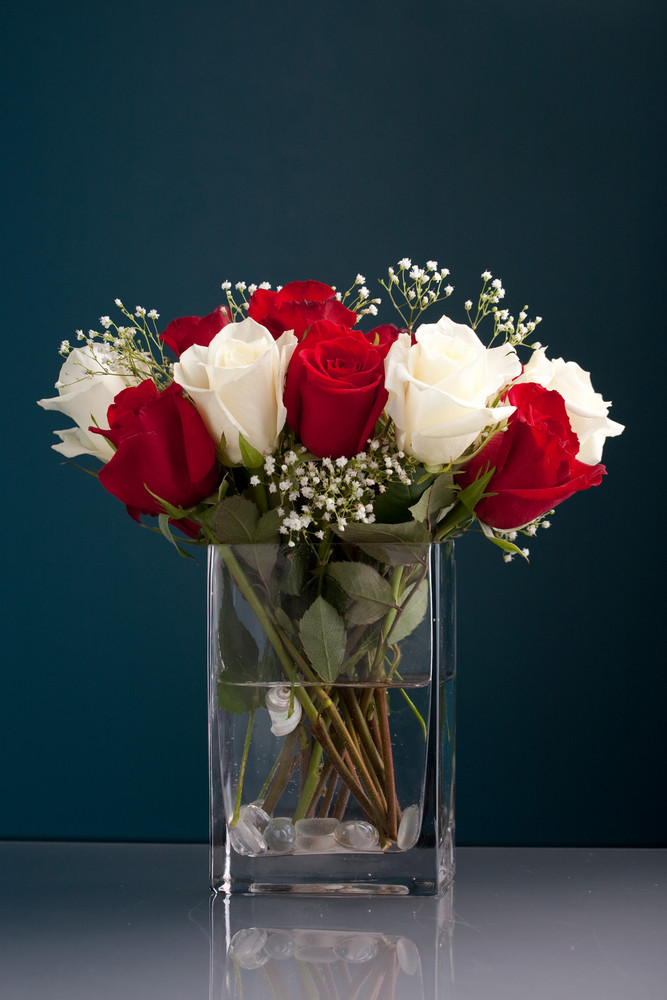 An arrangement of beautiful red and white roses with babys breath in a clear glass vase.