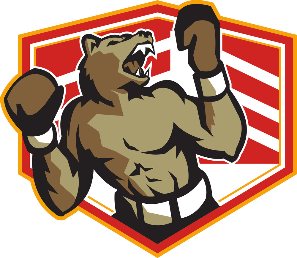 Angry Bear Boxer Boxing Retro