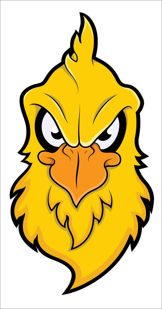 Angry Bird Vector