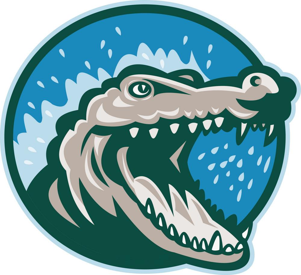 Angry Crocodile Or Gator Head Snapping