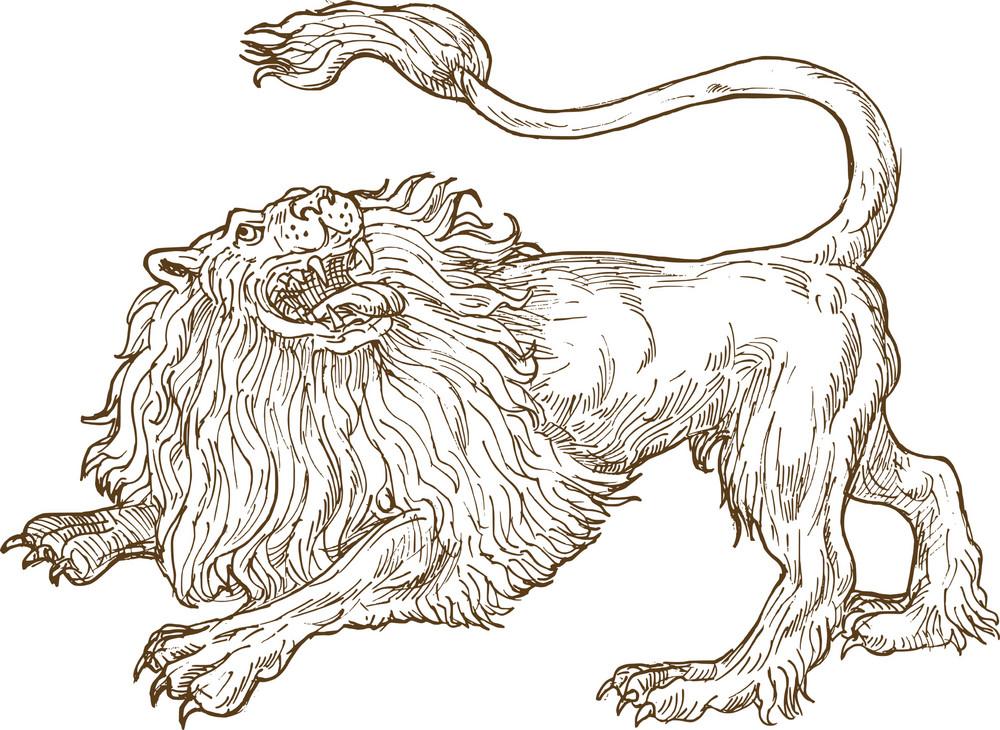 Lion roar side view drawing