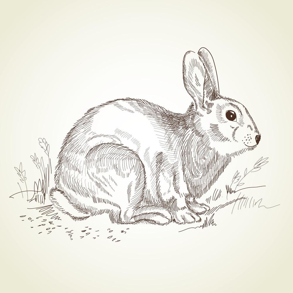 Antique Easter Rabbit