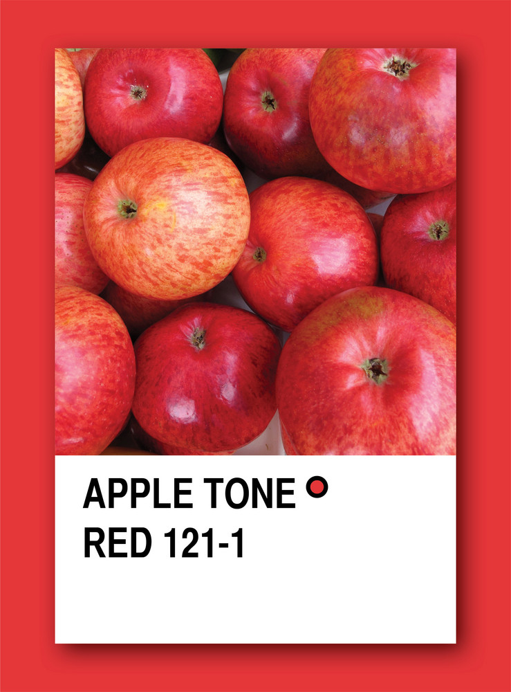 Apple Tone Red. Color Sample Design
