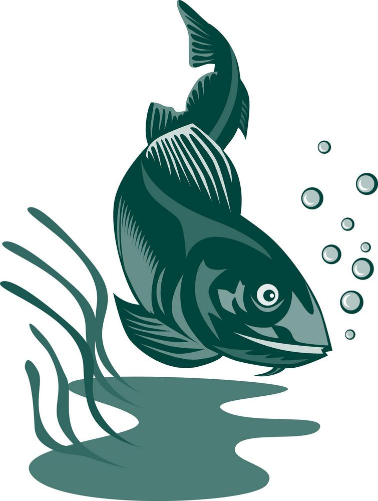 Atlantic Codfish Retro