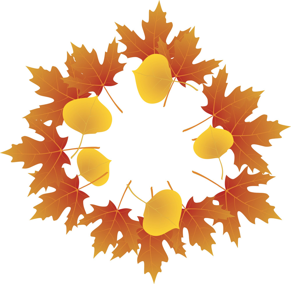 Autumn Leaves. Vector