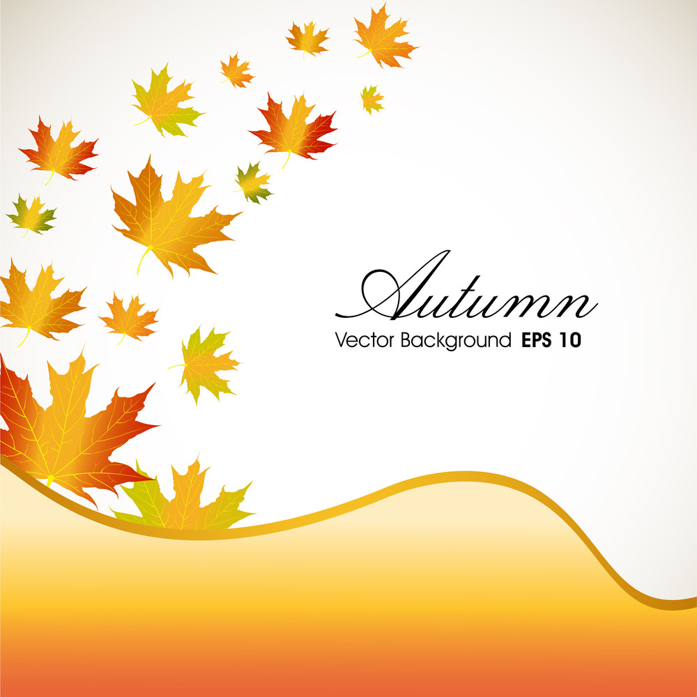 Autumn Leaves With Yellow Wave Background And Space For Your Text.