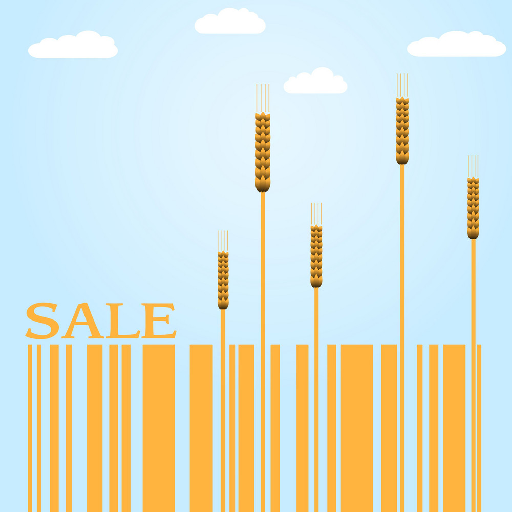 Autumn Sale Vector With Wheat And Barcode