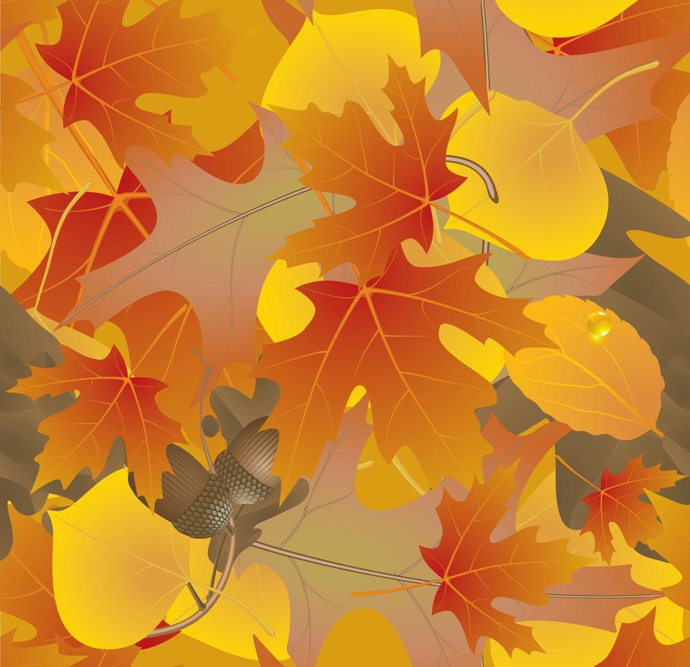Autumn Seamless Background. Vector.