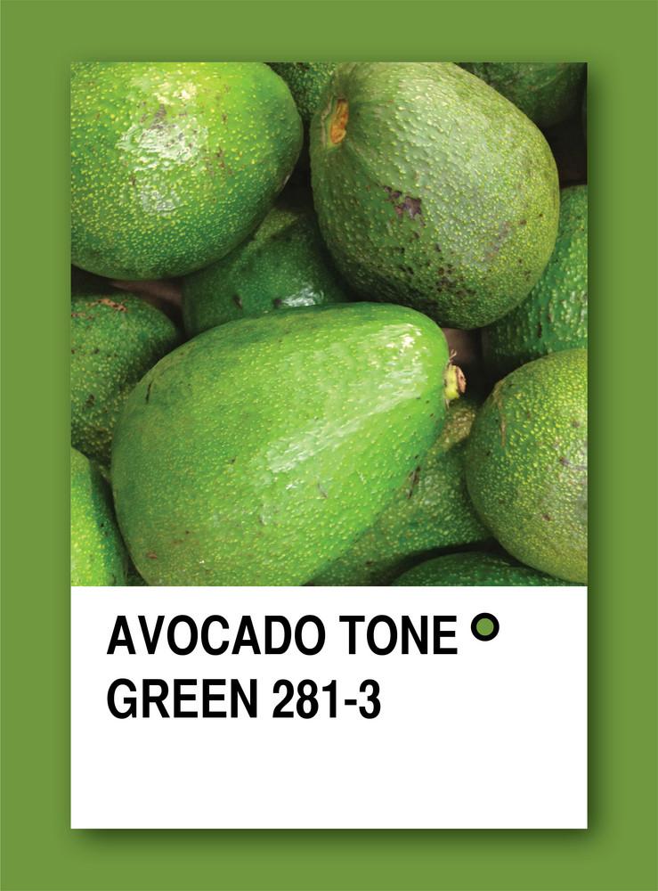 Avocado Tone Green. Color Sample Design