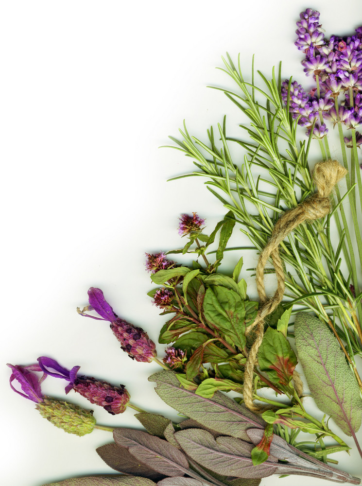 Background Made From Healing Herbs