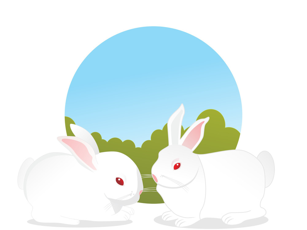 Background With Set Of Rabbit