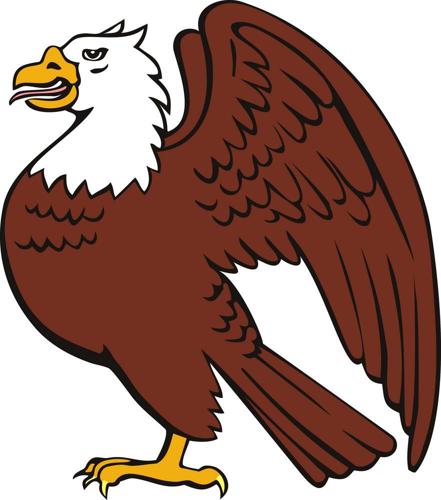 Bald Eagle Retro