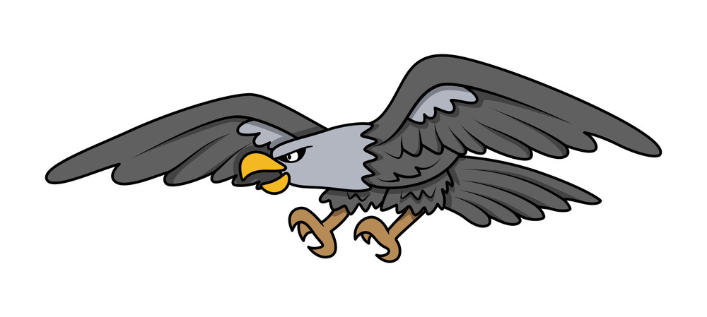 Bald Eagle - Vector Cartoon Illustration
