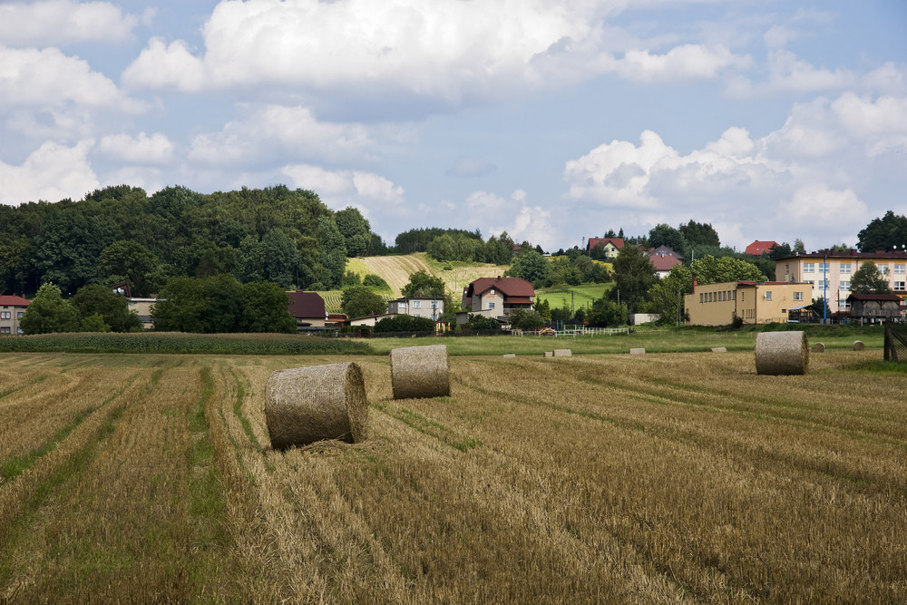 Bales Of Straw On The Field In The Polish Countryside