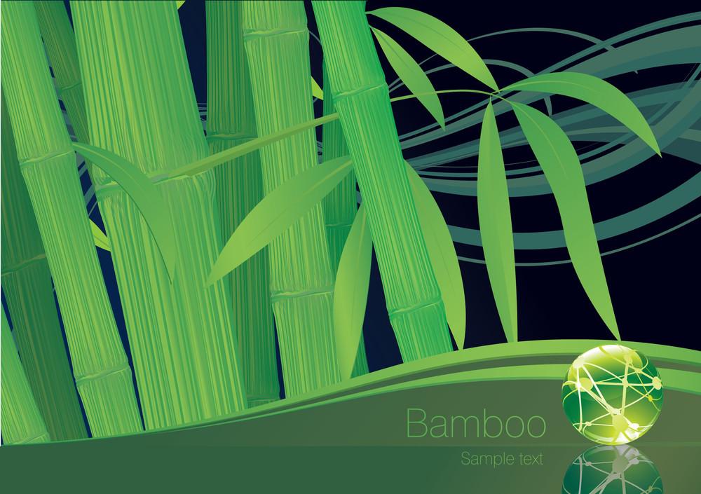 Bamboo Template. Vector.