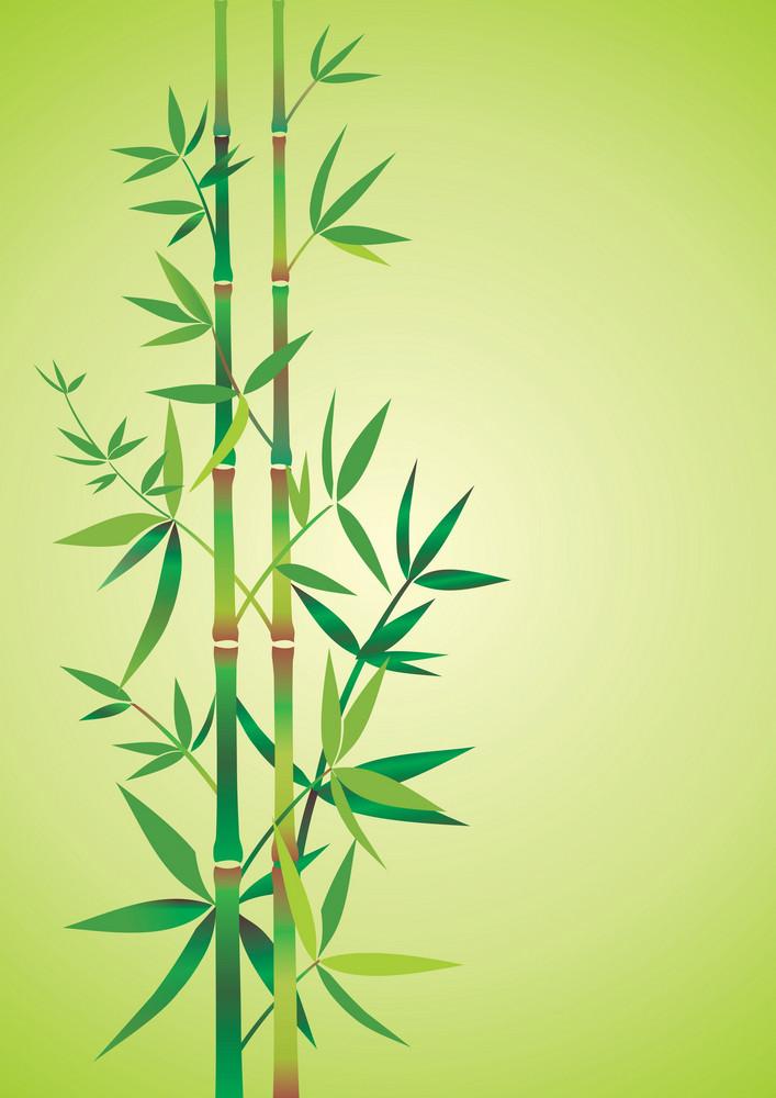 Bamboo Theme Vector