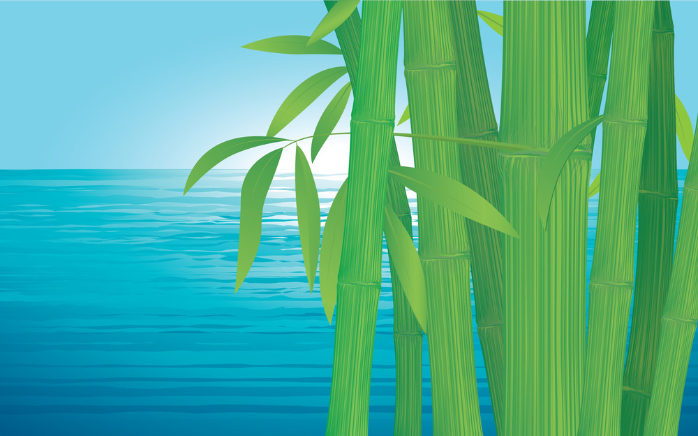 Bamboo. Vector Background.