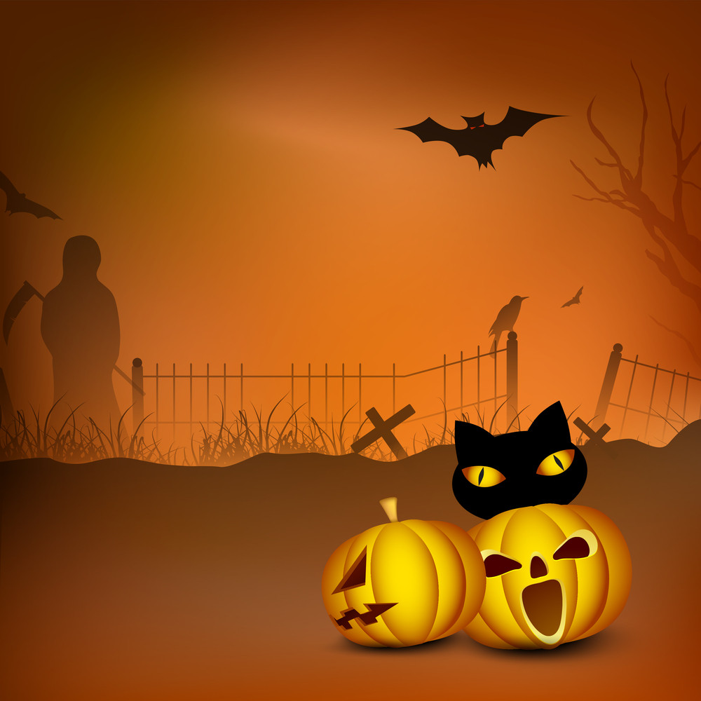 Banner Or Background For Halloween Party Night With Scary Pumpkins. Wild Cat On Night Background.