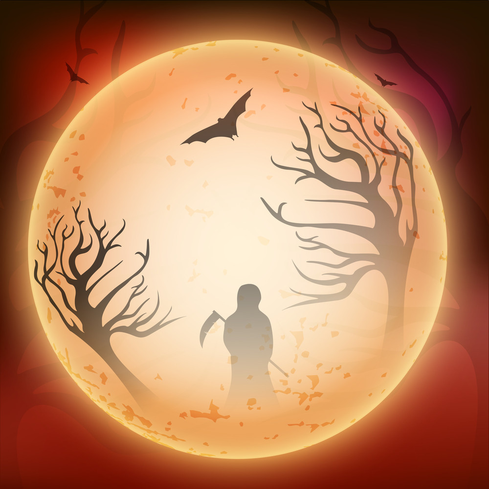 Banner Or Background For Halloween Party Night With Silhouette Of Witch On Night Background.